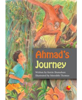 Ahmad's Journey