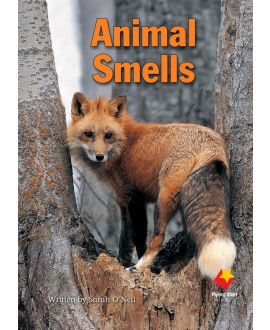 Animal Smells