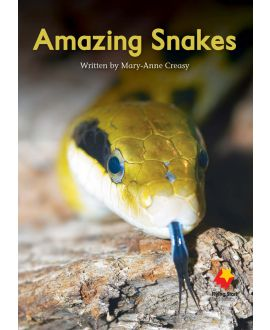 Amazing Snakes