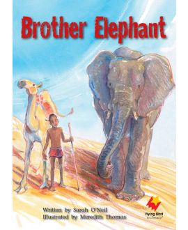 Brother Elephant
