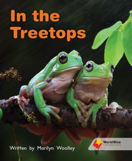 In the Treetops