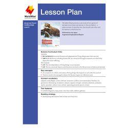 Lesson Plan - The Salmon Stream