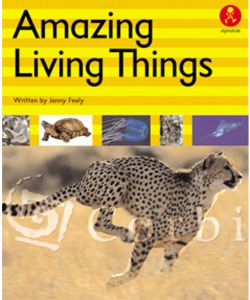 Amazing Living Things